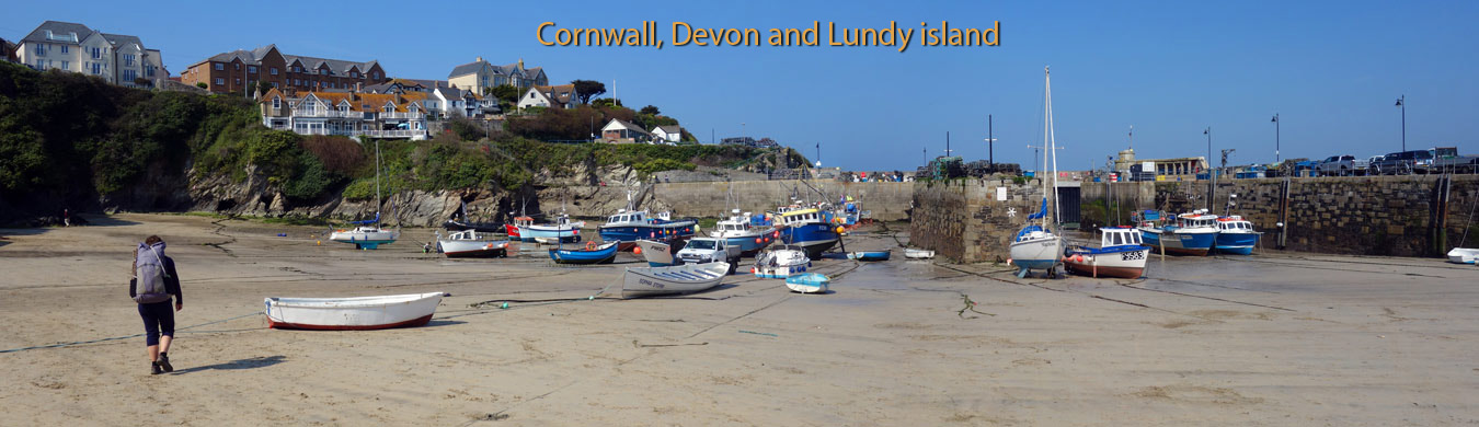 Newquay harbour on the South West Coast Path